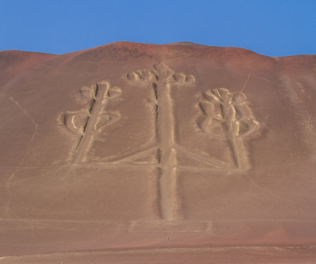 Ballestas Island Carving
