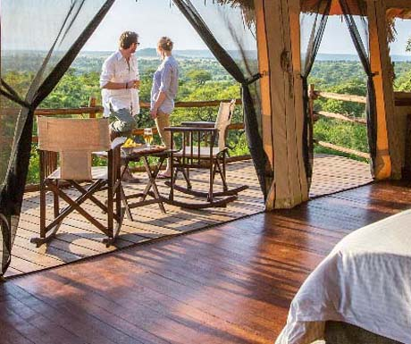 Tarangire Treetops accommodation