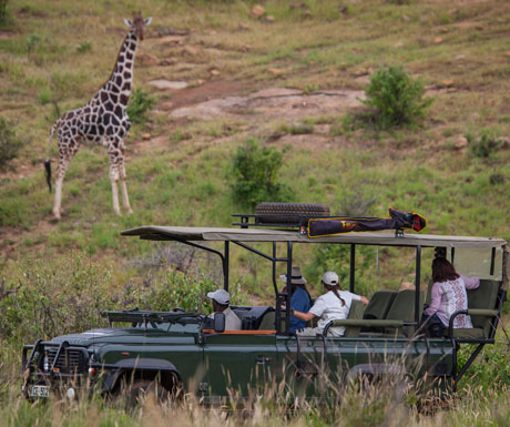 Loisaba Game Drives