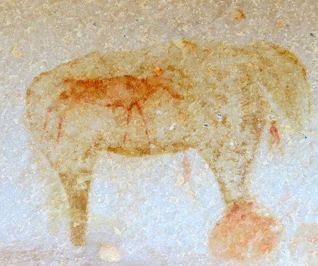 Kagga Kamma, rock art, elephant