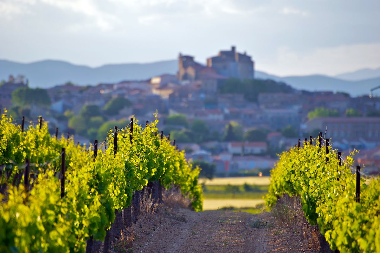 Chateau of Puissalicon, in Languedoc