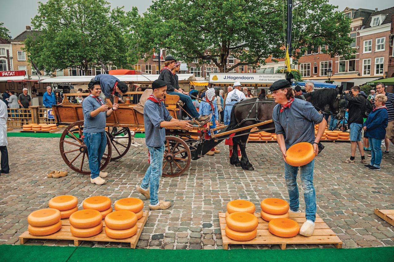 Young people carrying cart with cheese at the end of Market Square fair in Gouda, Netherlands